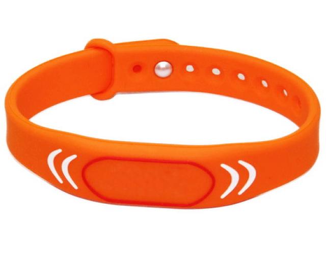 RFID-браслеты в образовательных учреждениях