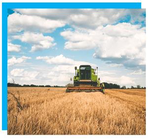 инвентаризация в агрохолдинга